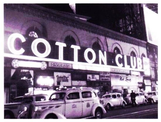 Фото CottonClub